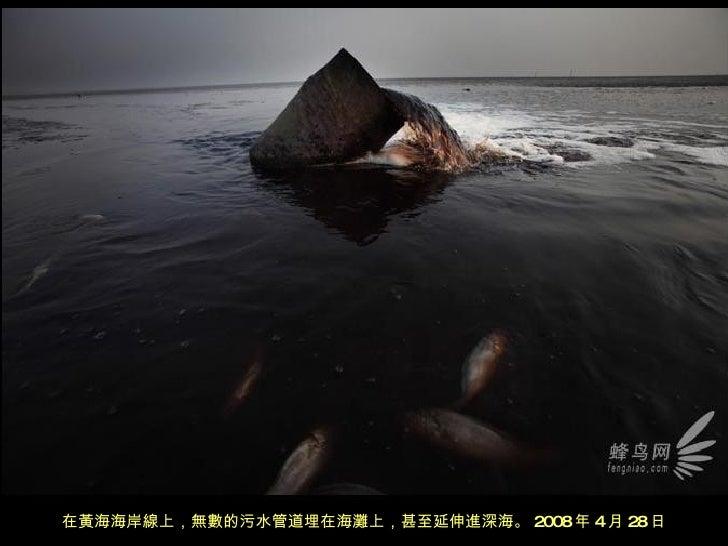 在黃海海岸線上,無數的污水管道埋在海灘上,甚至延伸進深海。 2008 年 4 月 28 日