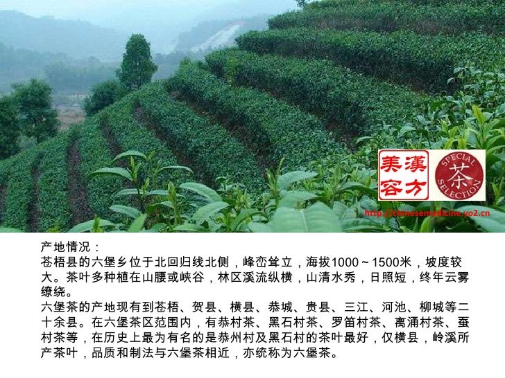 http://chinesemedicine.yo2.cn<br />产地情况:<br />苍梧县的六堡乡位于北回归线北侧,峰峦耸立,海拔1000~1500米,坡度较大。茶叶多种植在山腰或峡谷,林区溪流纵横,山清水秀,日照短,终年云雾缭绕。<b...