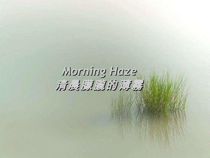 Morning Haze 清晨朦朧的薄霧