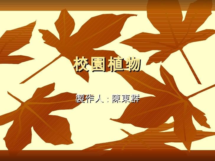 校園植物 製作人 : 陳東群