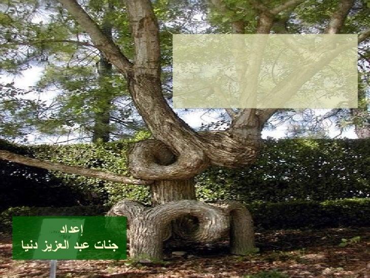 إعداد  جنات عبد العزيز دنيا شعب الإيمان