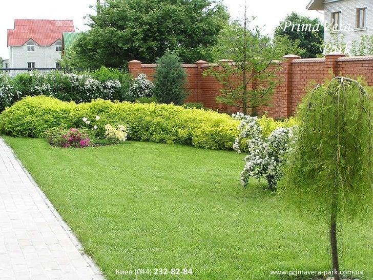 Скачать бесплатно программу для дизайна садового участка