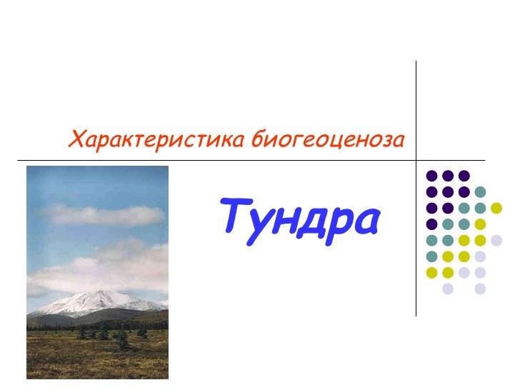 Характеристика биогеоценоза Тундра