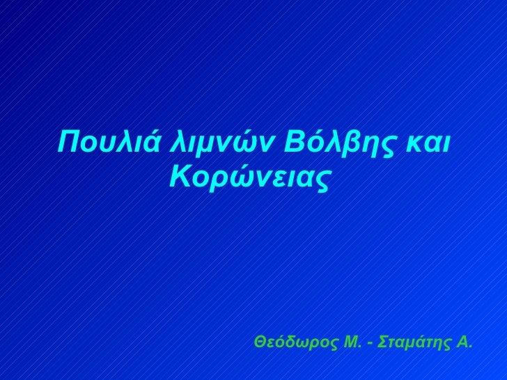 Πουλιά λιμνών Βόλβης και Κορώνειας   Θεόδωρος Μ. - Σταμάτης Α.