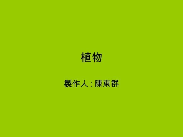 植物 製作人 : 陳東群