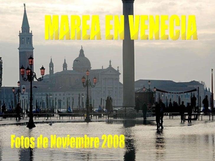 MAREA EN VENECIA Fotos de Noviembre 2008