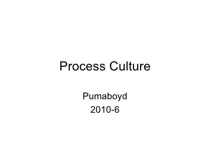 Process Culture Pumaboyd 2010-6