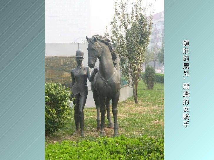 健壯的馬兒 , 瀟灑的女騎手