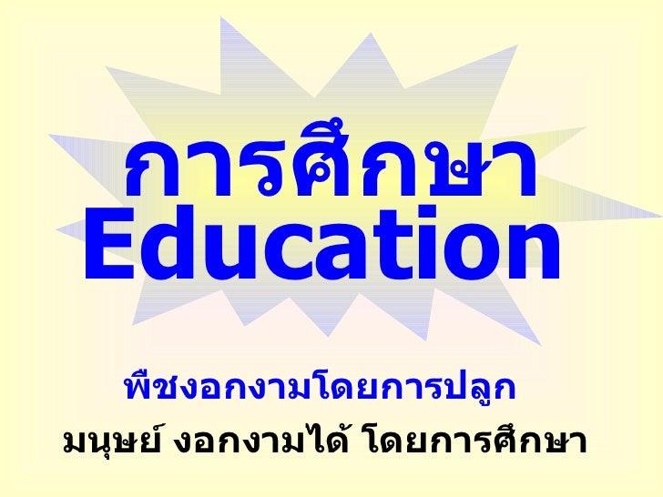 การศึกษา Education   <ul><li>พืชงอกงามโดยการปลูก   </li></ul><ul><li>มนุษย์ งอกงามได้ โดยการศึกษา </li></ul>
