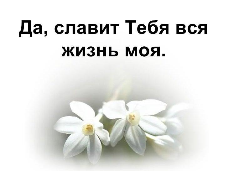 Да, славит Тебя вся жизнь моя.
