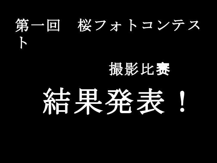 第一回 桜フォトコンテスト       撮影 比赛 結果発表!