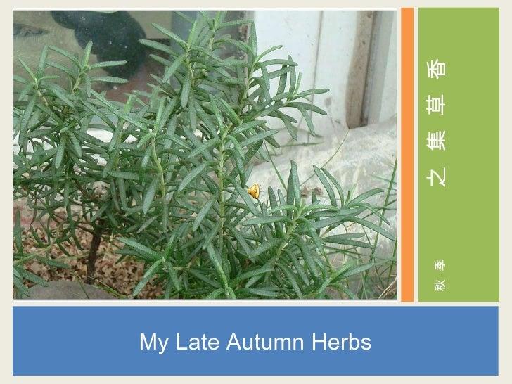 <ul><li>My Late Autumn Herbs </li></ul><ul><li>香 </li></ul><ul><li>草 </li></ul><ul><li>集 </li></ul><ul><li>之 </li></ul><ul...