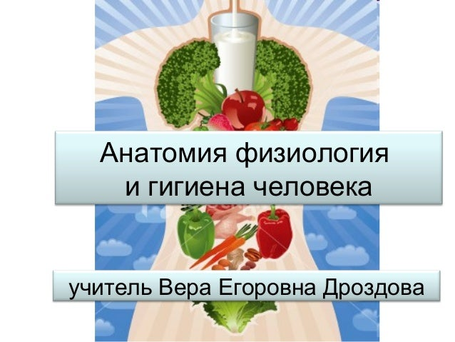 Анатомия физиология и гигиена человека учитель Вера Егоровна Дроздова
