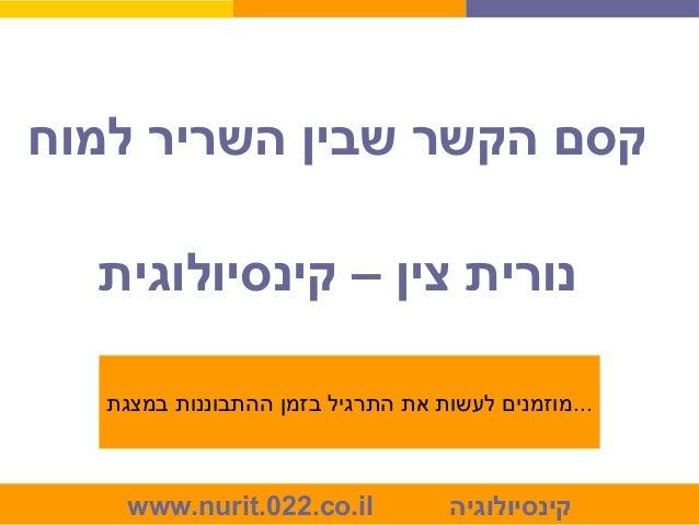 www.nurit.022.co.il קינסיולוגיה למוח השריר שבין הקשר קסם קינסיולוגית – צין נורית במצגת ההתבוננות בז...