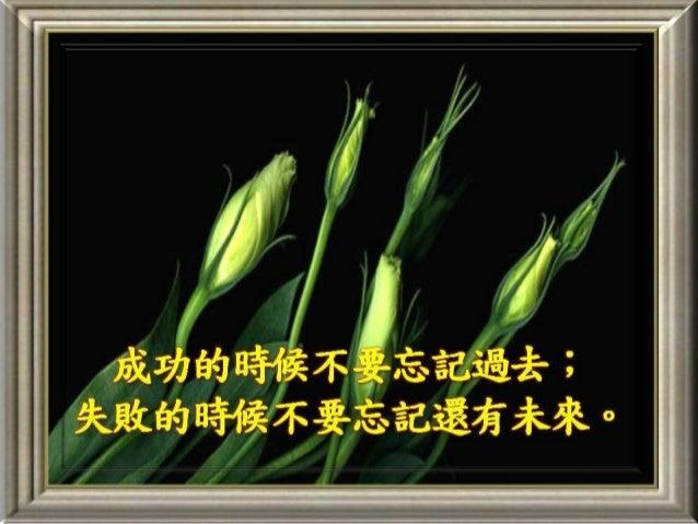 智慧點滴(三十六)
