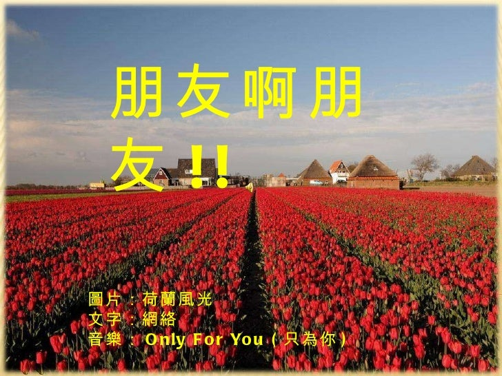 Peng 朋友啊朋友 朋友啊朋友 !! 圖片:荷蘭風光 文字:網絡  音樂: Only For You ( 只 為你 )