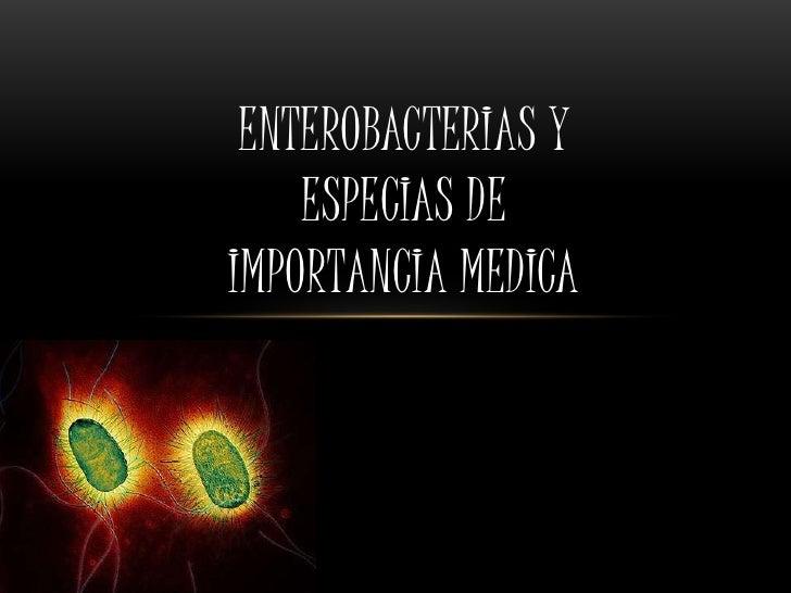 Enterobacterias y Especias de Importancia Medica