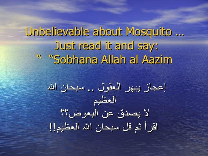 "Unbelievable about Mosquito …Just read it and say:   ""Sobhana Allah al Aazim "" إعجاز يبهر العقول  ..  سبحان الله   العظيم ..."