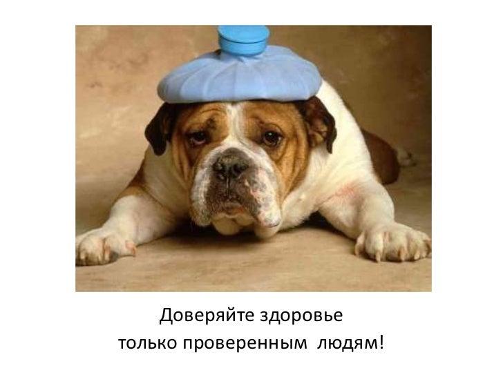 Доверяйте здоровье <br />только проверенным  людям!<br />
