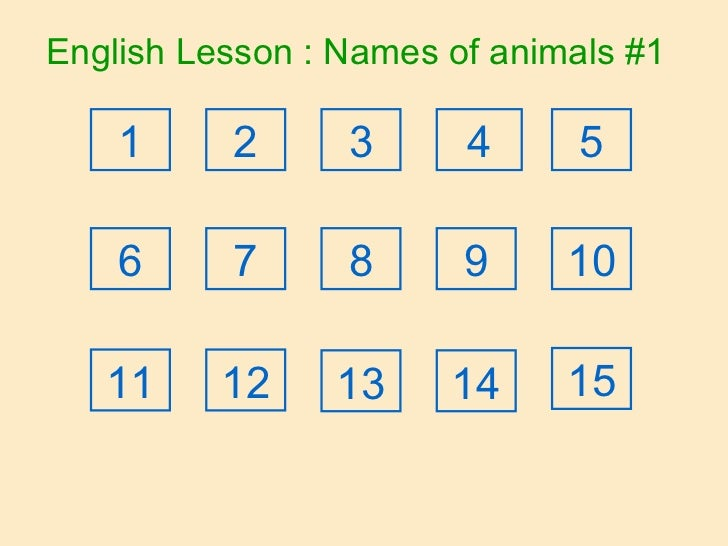 English Lesson : Names of animals #1 2 1 3 4 5 6 7 8 9 10 11 12 13 14 15