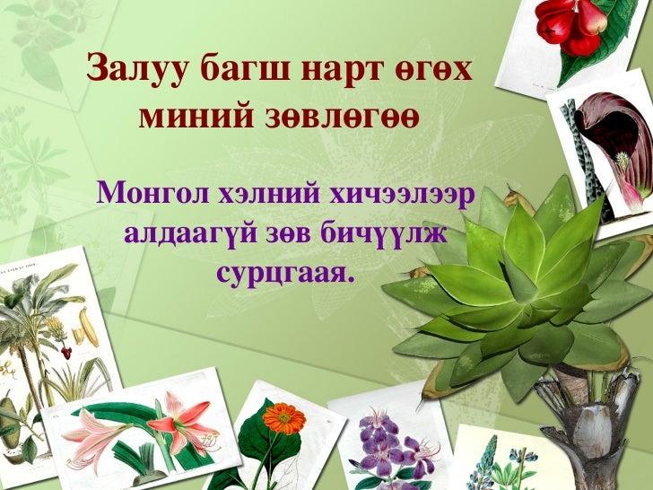 <ul><li>Залуу багш нарт өгөх миний зөвлөгөө </li></ul>Монгол хэлний хичээлээр алдаагүй зөв бичүүлж сурцгаая.