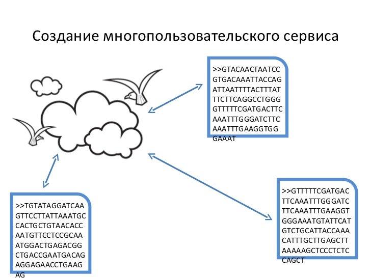 Создание многопользовательского сервиса >> GTACAACTAATCCGTGACAAATTACCAGATTAATTTTACTTTATTTCTTCAGGCCTGGGGTTTTTCGATGACTTCAAAT...