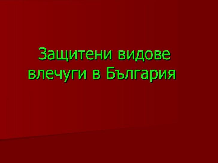 Защитени видове влечуги в България