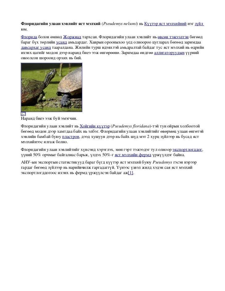 Флоридагийнулаанхэвлийтястмэлхий(Pseudemysnelsoni)ньКүүтэрястмэлхийнийнэгзүйлюм.ФлоридаболонөмнөдЖоржиадт...