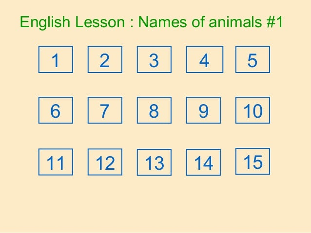 English Lesson : Names of animals #1 21 3 4 5 6 7 8 9 10 11 12 13 14 15