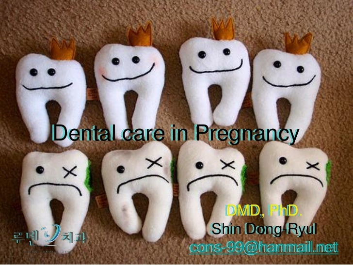 Dental care in Pregnancy                  DMD, PhD.                Shin Dong-Ryul             cons-99@hanmail.net