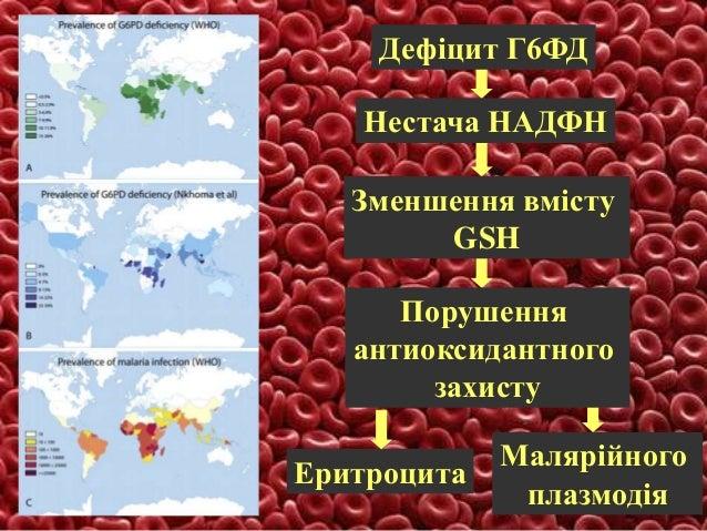 Позасудинний (внутрішньоклітинний) та внутрішньосудинний (позаклітинний) гемоліз при пароксизмальній нічній гемоглобінурії
