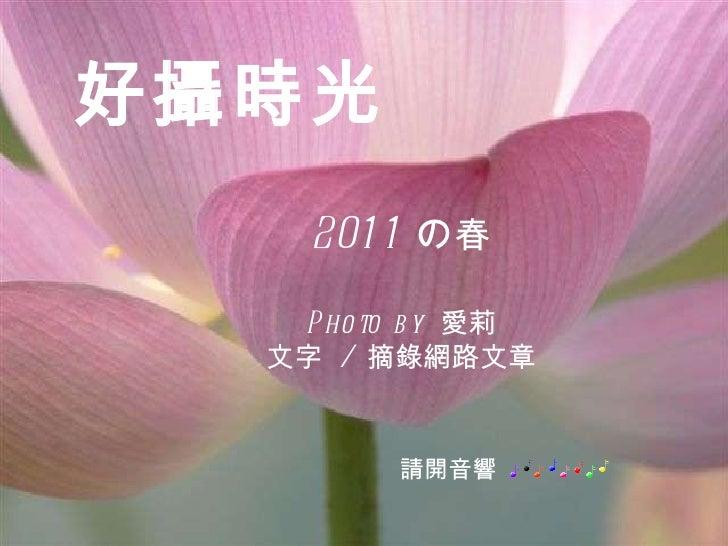 齊白石小傳 好攝時光 2011 の 春 Photo by  愛莉 文 字  /  摘錄網路文章 請開音響