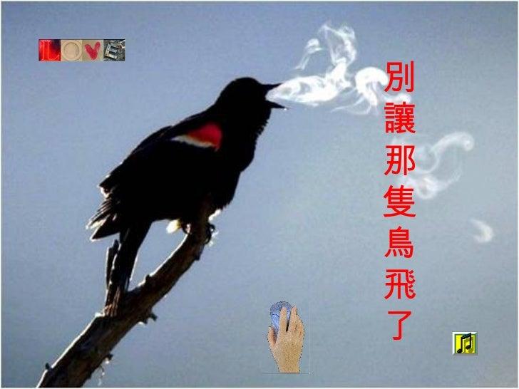 別讓那隻鳥飛了