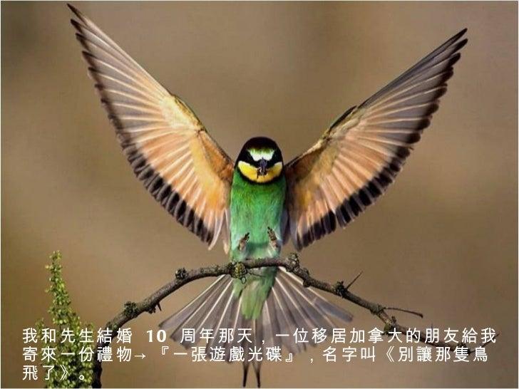 別讓那隻鳥飛了 Slide 3