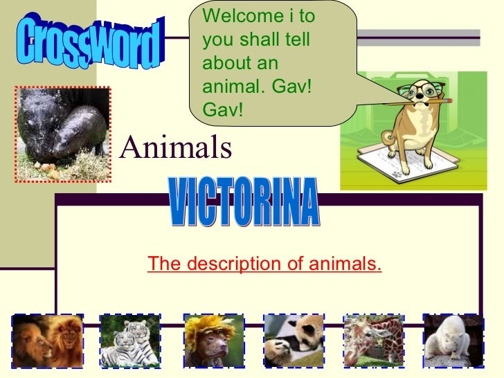 Animals The description of animals . Welcome i  to you shall tell about an animal.  Gav! Gav! Crossword VICTORINA