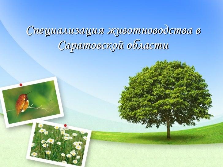Специализация животноводства в Саратовской области