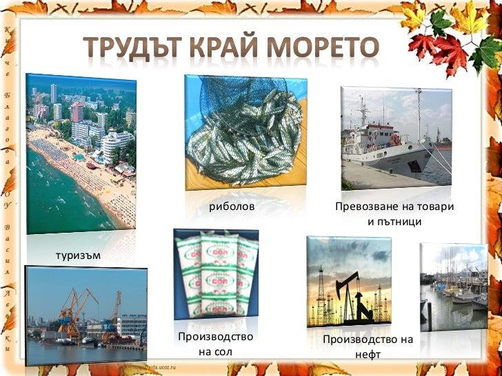 риболов Превозване на товари и пътници туризъм Производство на сол Производство на нефт