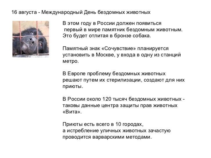 16 августа - Международный День бездомных животных В этом году в России должен появиться  первый в мире памятник бездомн...