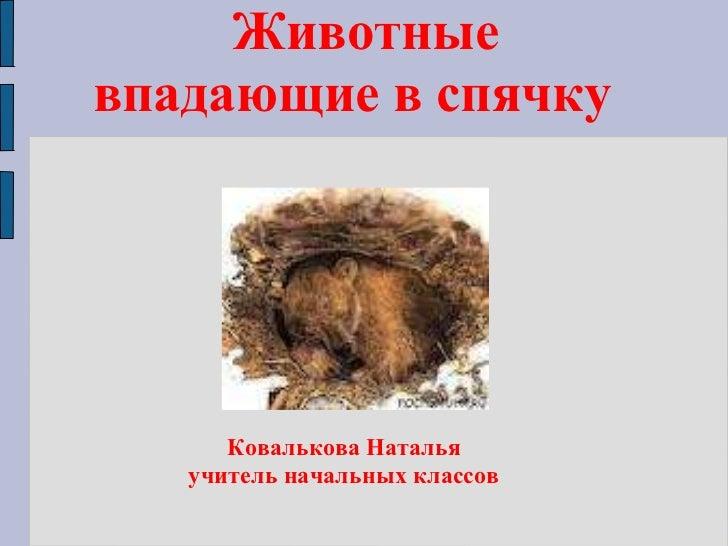 Животные впадающие в спячку  Ковалькова Наталья учитель начальных классов