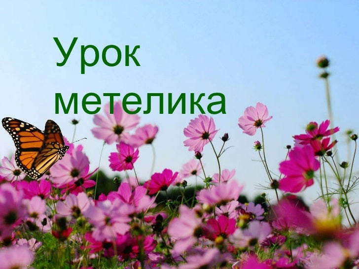 Урок метелика