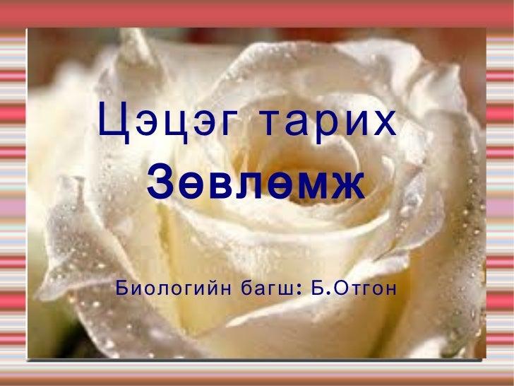 Цэцэг тарих ЗөвлөмжБиологийн багш : Б . Отгон