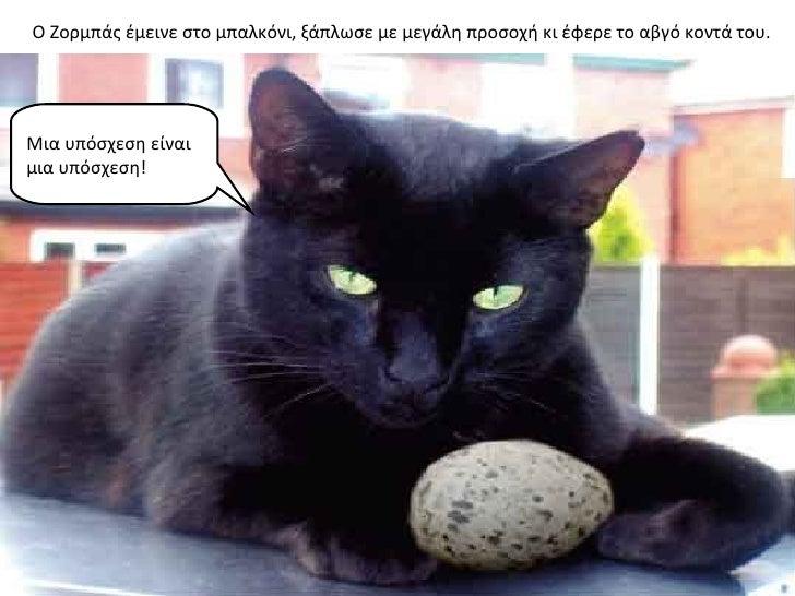 Ο Ζορμπάς έμεινε στο μπαλκόνι, ξάπλωσε με μεγάλη προσοχή κι έφερε το αβγό κοντά του.Μια υπόσχεση είναιμια υπόσχεση!