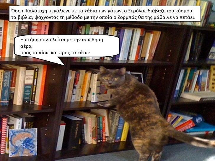 Όσο η Καλότυχη μεγάλωνε με τα χάδια των γάτων, ο Ξερόλας διάβαζε του κόσμουτα βιβλία, ψάχνοντας τη μέθοδο με την οποία ο Ζ...