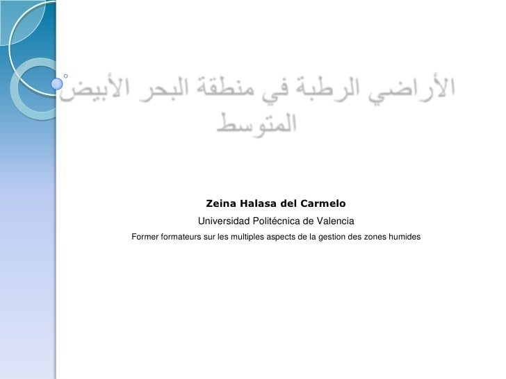 Zeina Halasa del Carmelo                 Universidad Politécnica de ValenciaFormer formateurs sur les multiples aspects de...