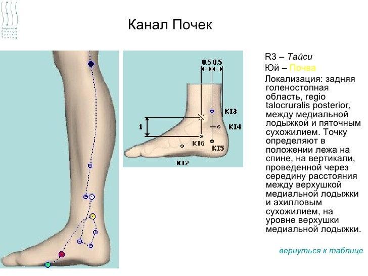 Канал Почек              R3 – Тайси              Юй – Почва              Локализация: задняя              голеностопная   ...