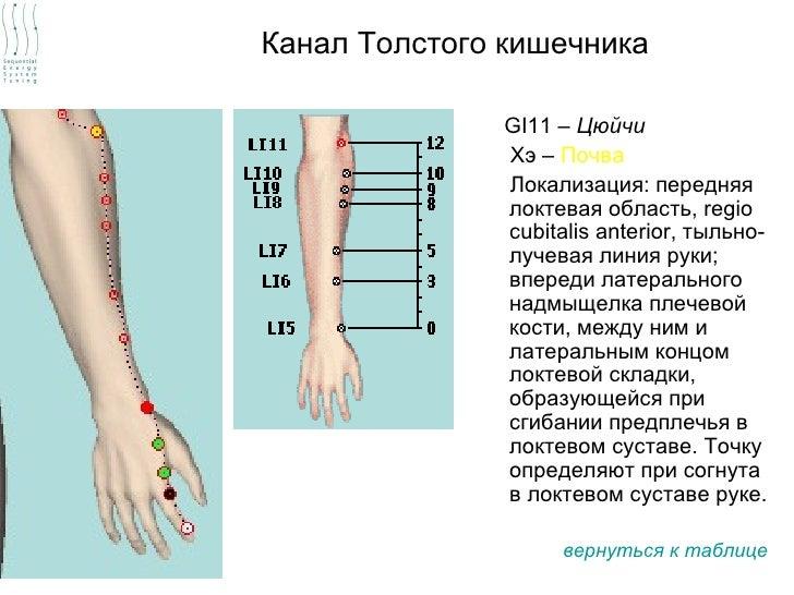 Канал Толстого кишечника               GI11 – Цюйчи               Хэ – Почва               Локализация: передняя          ...