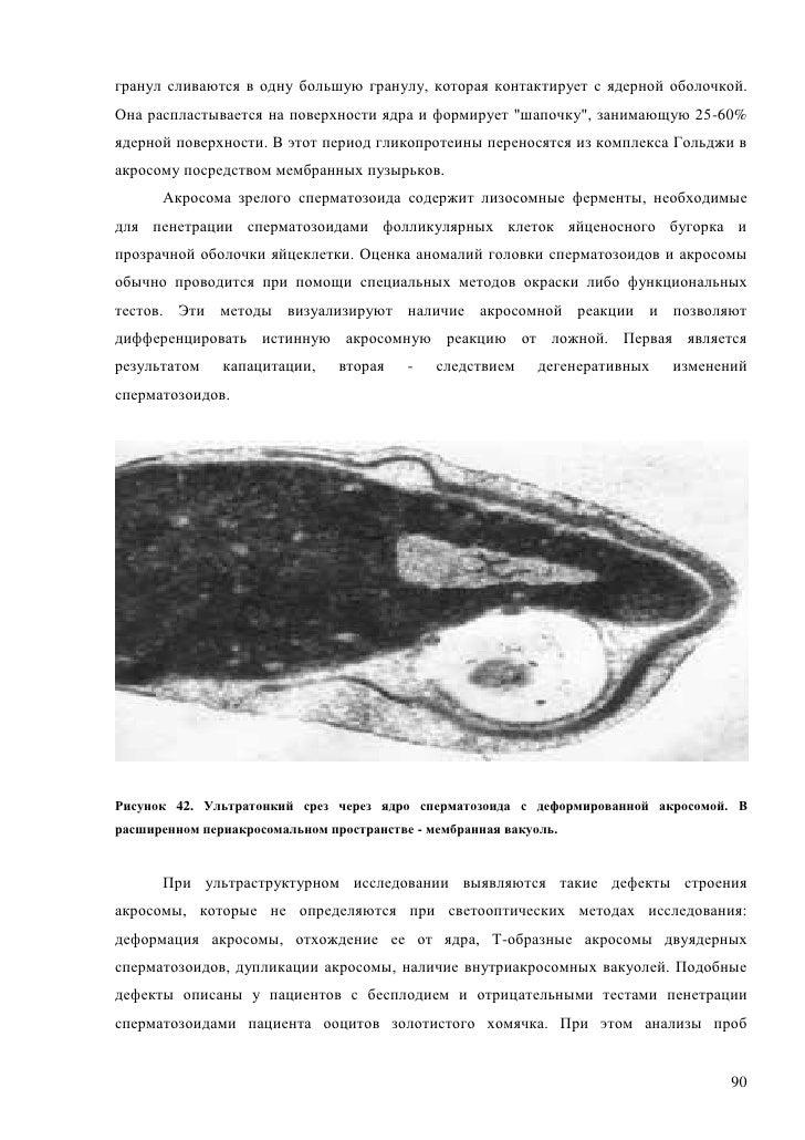 При извержение сперматозоидов черные пятна