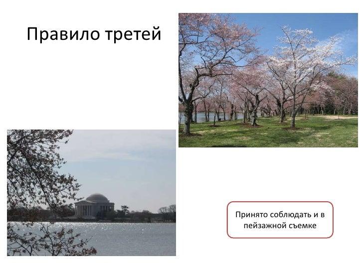 Правило третей                 Принято соблюдать и в                   пейзажной съемке