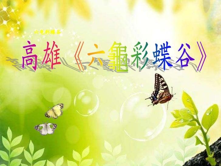 六龟彩蝶谷