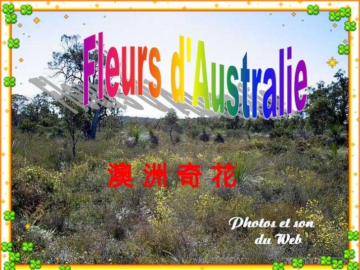 澳洲奇花   Photos et son     du Web